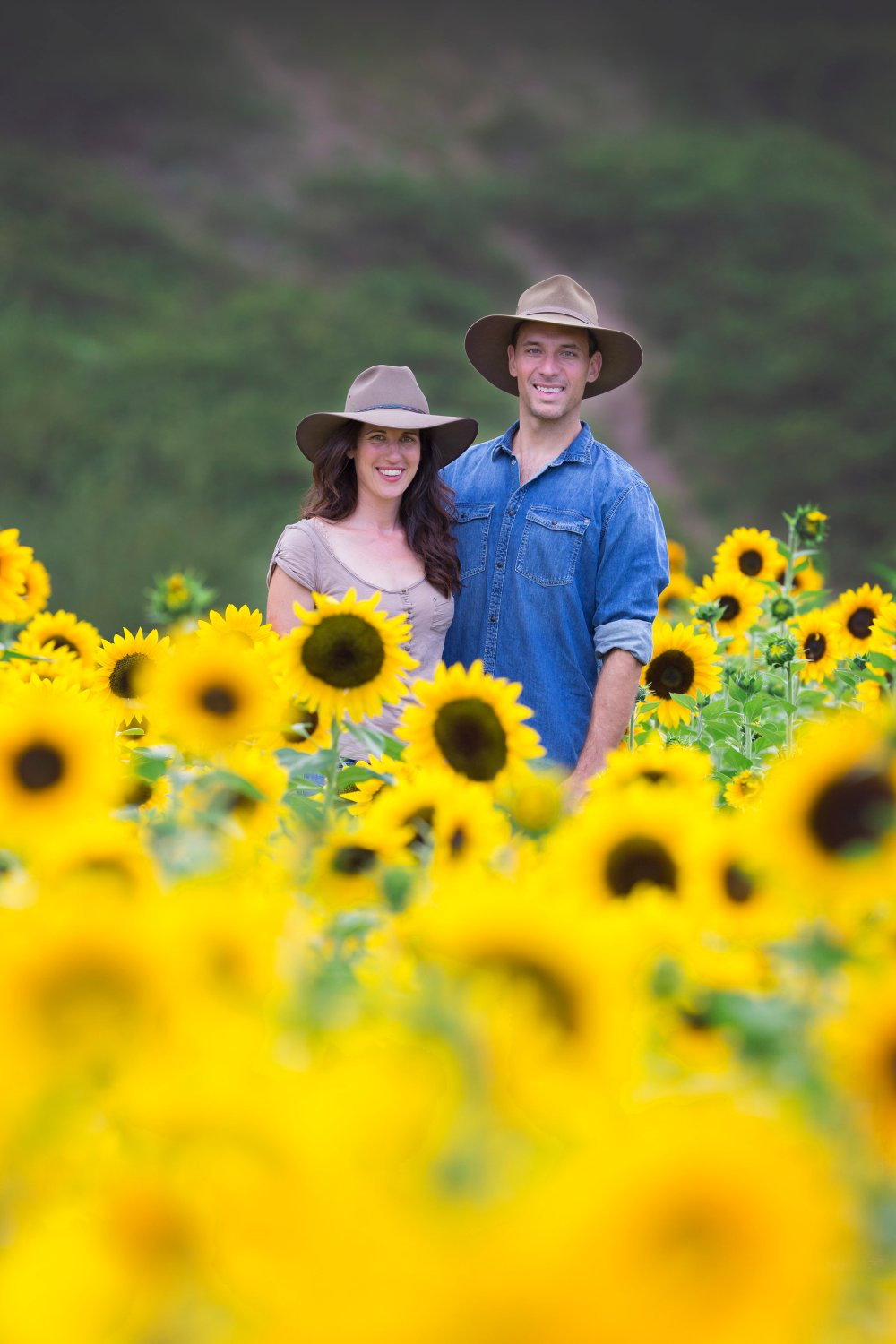 Couple in a sunflower field