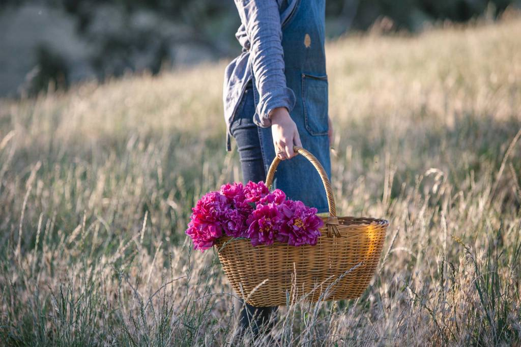 Girl holding bucket of pink blooms