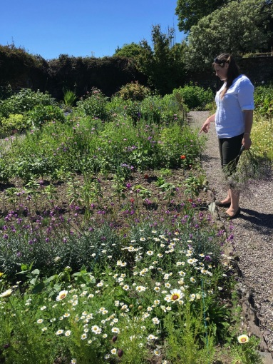 Iona in picking garden Ballymaloe